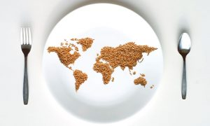 world-on-plate
