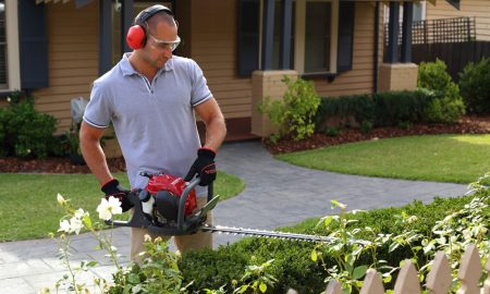 Honda's tips to spruce up your garden