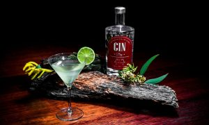 313-gin-and-cocktail