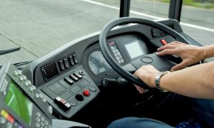 bus driver stock image