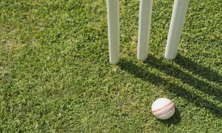 cricket whiteball stock image