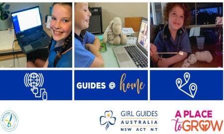 Guides at Home Header