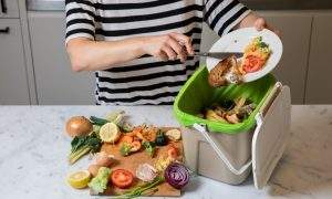 Food scraps recycling trial